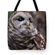 You Can Call Me Owl Tote Bag