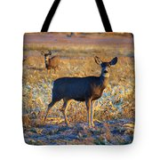 You Have Her Attention Tote Bag