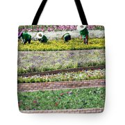 You Reap What You Sow Tote Bag