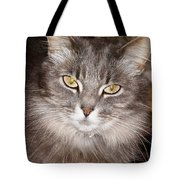 You Think Tote Bag