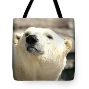 You Want Something? Tote Bag