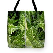 Young Aloe In Stereo Tote Bag
