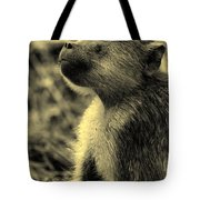 Young Baboon In Black And White Tote Bag