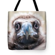 Young Baby Vulture Raptor Bird Tote Bag