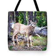 Young Beauty Tote Bag