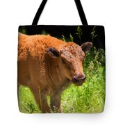 Young Bison Tote Bag