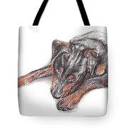 Young Black Dog Portrait Tote Bag