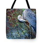 Young Blue Heron Preening Tote Bag