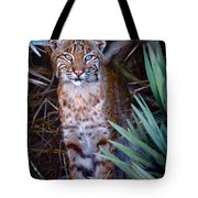 Young Bobcat Tote Bag