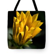 Young Daisy Tote Bag