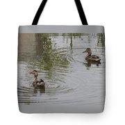 Young Ducks Tote Bag