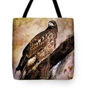 Young Eagle Pose II Tote Bag