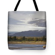 Young Grizzly Fishing At Hallo Bay Tote Bag
