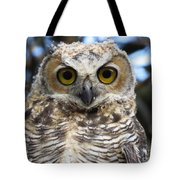 Young Hooter  Tote Bag