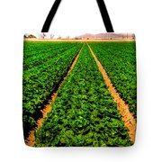 Young Lettuce Tote Bag