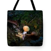 Young Lonely Mushroom 2 Tote Bag