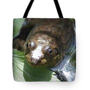 Young Mill Lake Frog Tote Bag