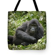 Young Mountain Gorilla Tote Bag