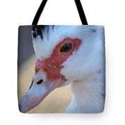 Young Muscovy Closeup Tote Bag