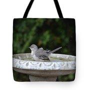 Young Northern Mockingbird In Bird Bath Tote Bag
