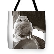 Young Owl On Wheel Tote Bag by Roger Snyder