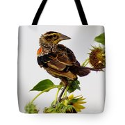 Young Redwing In The Wind Tote Bag