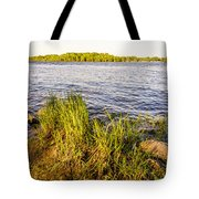 Young Reeds  Tote Bag