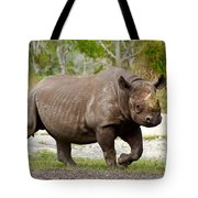 Young Rhinoceros Tote Bag
