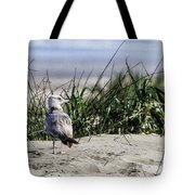 Young Seagull No. 1 Tote Bag
