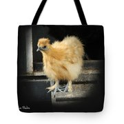 Young Silkie Tote Bag