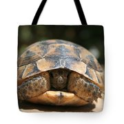 Young Spur Thighed Tortoise Looking Out Of Its Shell Tote Bag