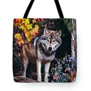 Young Timber Wolf Tote Bag