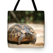 Young Tortoise Emerging From Its Shell Tote Bag