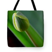 Young Tulip Tote Bag