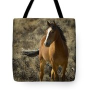 Young Wild Mare   #0307 Tote Bag