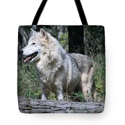 Young Wolf Tote Bag