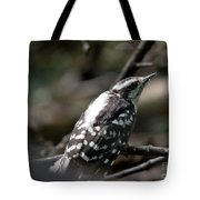 Young Woodpecker Tote Bag