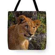 Your Lioness Tote Bag