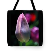 Youth And Beauty Tote Bag by Rona Black