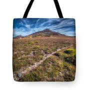 Yr Eifl Trail Tote Bag by Adrian Evans