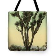 Yucca Cactus At Hesperia California Tote Bag