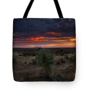 Yucca Sunset Tote Bag