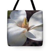Yulan Magnolia  4591 Tote Bag