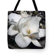 Yulan Magnolia  4753 Tote Bag
