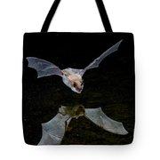 Yuma Myotis Bat Tote Bag