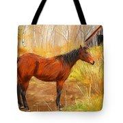 Yuma- Stunning Horse In Autumn Tote Bag