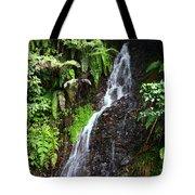 Yungas Waterfall Tote Bag