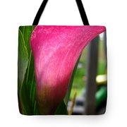 Zantedeschia Named Regal Tote Bag