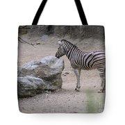 Zebra And Rock Tote Bag