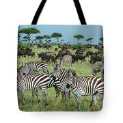 Zebra And Wildebeest Grazing Masai Mara Tote Bag